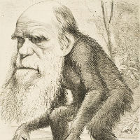 Victorian Literature and Darwin's Origin of Species